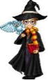 WARRY POTTER